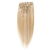 Clip In Extensions 50 cm #27/613 Hellblond Mix